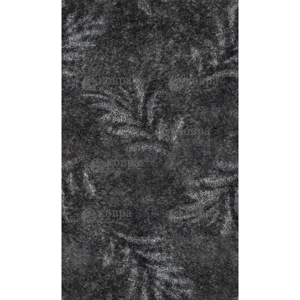 FERN(DOMO) 0051